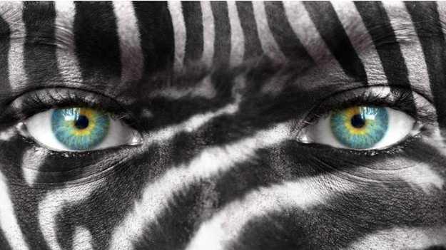 Evrim Sorusu: Yüzümüz Neden Daha Kıllı Değil?
