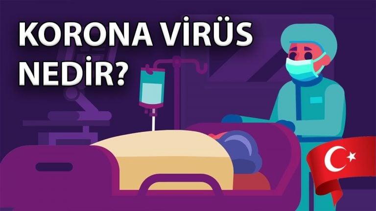 Koronavirüs Nedir ve Nasıl Yayılır?